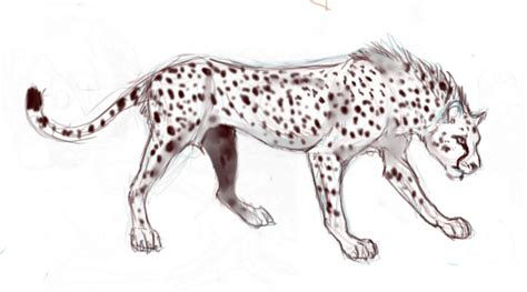 sketchbook cheetah cheetah sketch by pharao on deviantart