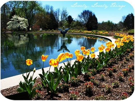 Botanical Gardens Huntsville 1000 Images About Huntsville Botanical Garden On Pinterest