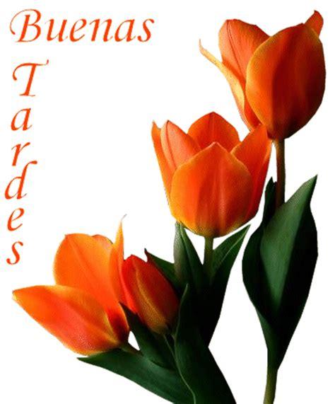 imagenes buenas tardes para hi5 buenas tardes mensajes tarjetas y im 225 genes con buenas