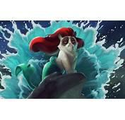 Cat Mermaid Wallpaper  Anime Better