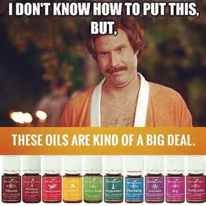 Oil Meme - funny essential oil meme essential oil memes pinterest