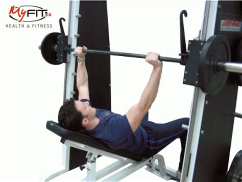 incline smith machine bench press smith machine incline bench guillotine press upper chest