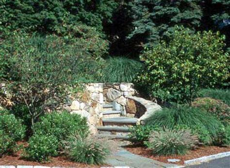 columbia sc landscape company we do it all low cost