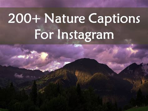 captions for pictures 200 nature captions for instagram