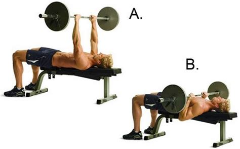 flat bench barbell press top 10 chest exercises to get ripped for next summer