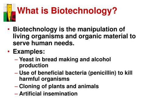 brief introduction about biotechnology ppt introduction to biotechnology powerpoint presentation id 217374