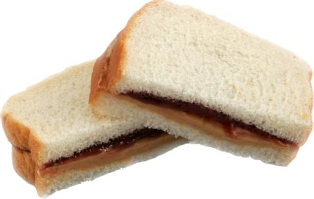 What Do You About Pbjs by Our Lord Pbj Minus Birds With Arms Notbirdswitharms