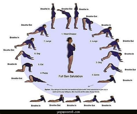 the best 110 poses for practice guide and tips for improving your health books basic poses for archives poses