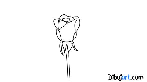 imagenes de una rosa para dibujar faciles c 243 mo dibujar una rosa 3 dibujos de rosas rosadas