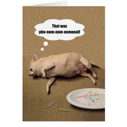 chihuahua quotes and christmas quotesgram