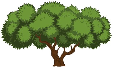 clip trees tree png clipart best