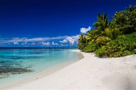 beautiful tropical beach landscape  maldives stock photo