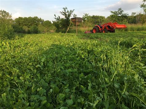 Wildlife Food Plot Planters by Planning And Food Plots In The South Muddy Outdoors