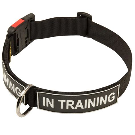 service in collar buy collar with patches for mastiff and service