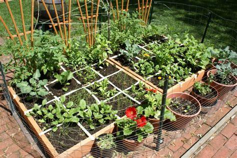 vegetable gardening for beginners guide plant