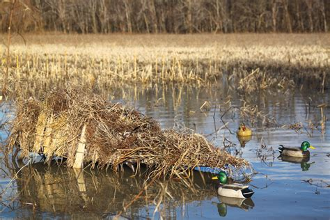 layout duck hunting best new waterfowl blinds and layouts for 2015 wildfowl