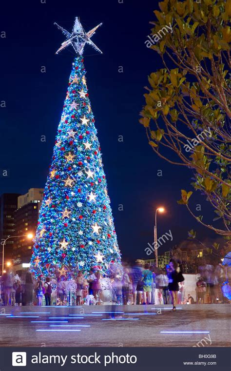 worlds largest solar powered christmas tree at king george