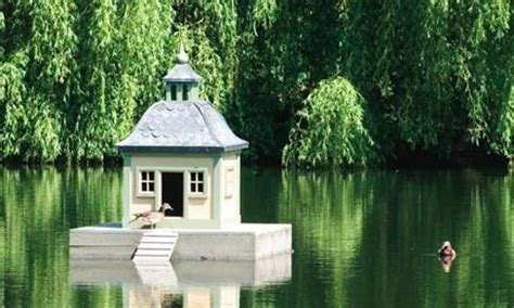 buy duck house sitting with a cup of coffee coffee lovers page 587