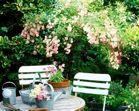give  small garden  wow factor  year