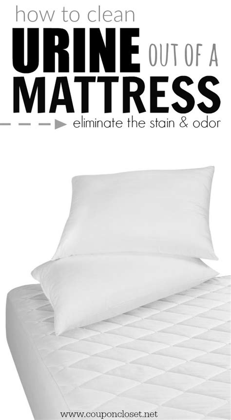 How To Clean Urine Mattress by How To Clean Out Of A Mattress Coupon Closet