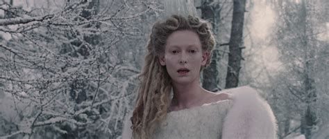 Characters From Narnia The The Witch And The Wardrobe by Wardrobe Chronicles Of Narnia Witch And Wardrobe