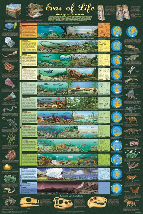evolution the story of life the prehistoric eras dinosaur timeline zsite59 history eras of life geological time chart educational poster