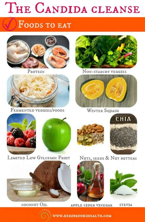 Candida Detox Food List by Candida Cleanse Recipe Dandk
