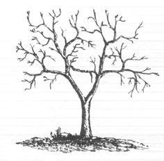b tree drawing tool how to draw a tree dr drawing sketches