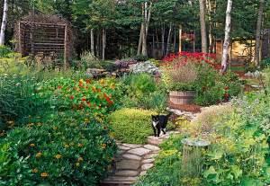 color garden color gardens