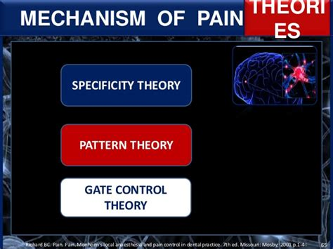 pattern theory pain nervous system and mechanism of pain sensation