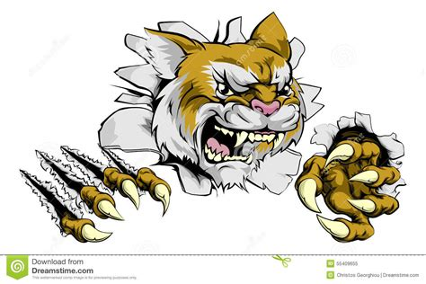 angry wildcat sports mascot stock vector image 55409655