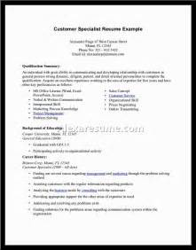 Professional Summary Examples For Resume Professional Summary Examples Alexa Resume
