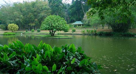 Peradeniya Botanical Gardens Botanical Garden Peradeniya
