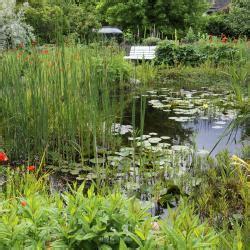 Garten Uneinsehbar Gestalten by Teichrand Gestalten Mit Pflanzplan Mein Sch 246 Ner Garten