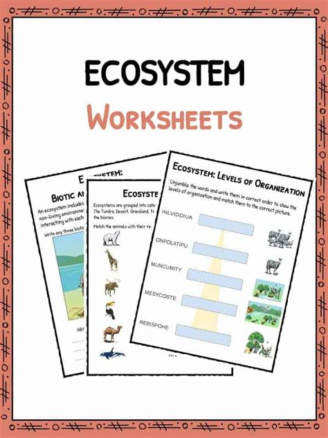 Ecosystems Worksheet by Ecosystem Worksheets Biotic Abiotic Lesson Resources