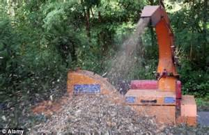 woodwork accidents decapitated when wood chipper up rope