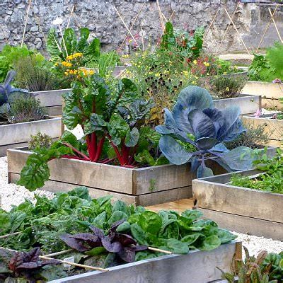 how to make terrace vegetable garden complete tutorial