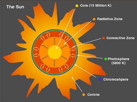 parts of the sun diagram www pixshark images