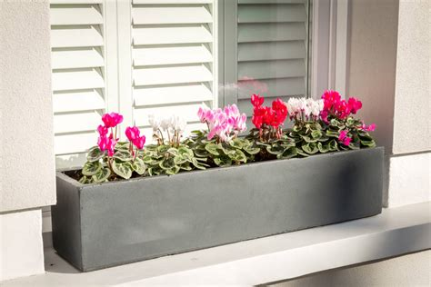 large window box planter in hstead lead by bay and box
