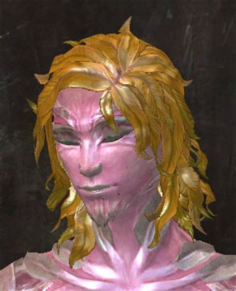 Gw2 Hair Style Kit For by Gallery Of New Hairstyles In Makeover Kits Guildwars2