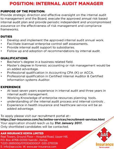auditor description 2 key duties responsibilities for