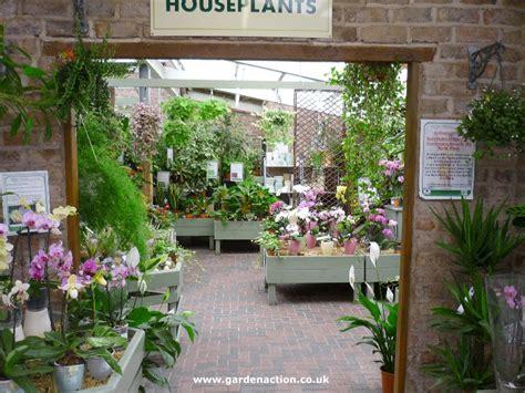 cafe  houseplants  lady green garden centre