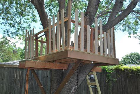 how to build a tree house how to build a tree house in easy tips best house design