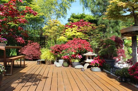 garden plants and flowers 35 patio potted plant and flower ideas creative and