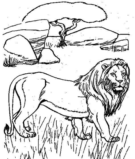 free coloring pages of desert animals