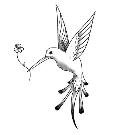 hummingbird tattoo designs free hummingbird