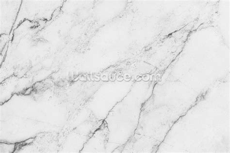 Texture Wall by Black And White Marble Wallpaper Wall Mural Wallsauce Usa