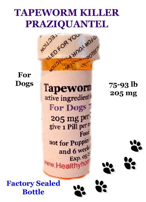 praziquantel for dogs healthyhomepets 6 month tapeworm killer 205mg of praziquantel for dogs 75 93 lb flea