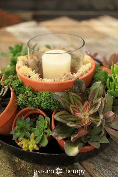 Large Succulent Planter by Make This Stunning Terra Cotta Pot Succulent Centerpiece