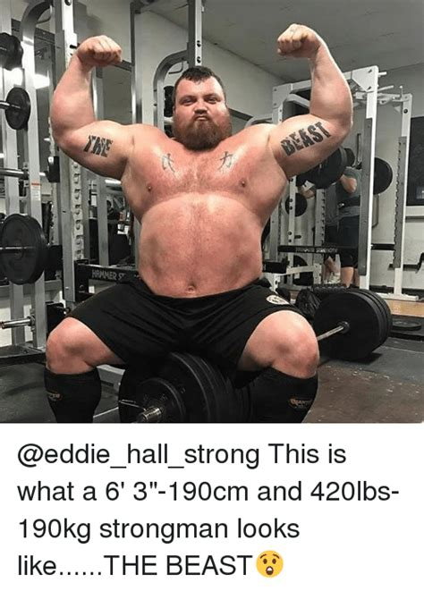 Strongman Meme - hammer st this is what a 6 3 190cm and 420lbs 190kg